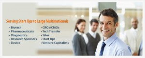 Pearl Pathways. Serving Startups to Multinationals.